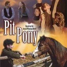 La locandina di Pit Pony