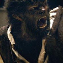 Benicio Del Toro in una scena della metamorfosi nel film The Wolf Man