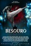 La locandina di Besouro