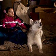 Ariel Gade e il cucciolo Buck in una scena del film Il richiamo della foresta 3D
