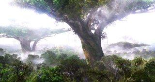 Una vista del paesaggio del pianeta Pandora nel film Avatar