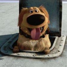 Un'immagine di Dug dal corto inedito La missione di Dug contenuto nel blu-ray e nel dvd di Up