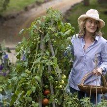 Jane (Meryl Streep) si rilassa nel suo orticello nella commedia E' complicato