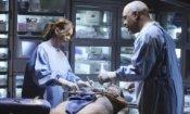 Grey's Anatomy: certezze e novità verso il finale della stagione 6