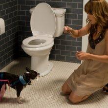 Jennifer Lopez in una situazione stressante nella commedia Piacere, sono un po' incinta