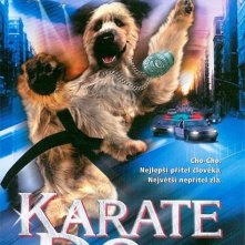 La locandina di The Karate Dog