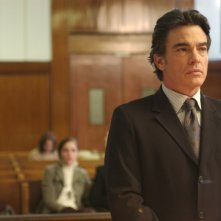 Peter Gallagher nel film Adam