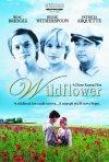 La locandina di Wildflower