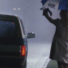 Un'immagine del film All About Steve con Sandra Bullock