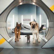 Diggs e Butch in un'immagine del film Cats & Dogs: The Revenge of Kitty Galore