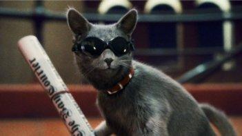Primo piano di Catherine dal film Cats & Dogs: The Revenge of Kitty Galore