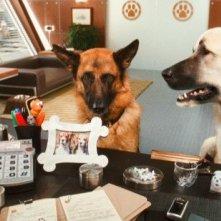 Un'immagine del film Cats & Dogs: The Revenge of Kitty Galore