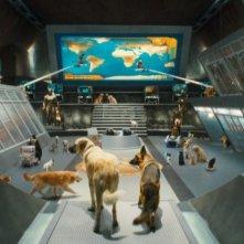 Una base speciale per le spie a quattro zampe del film Cats & Dogs: The Revenge of Kitty Galore