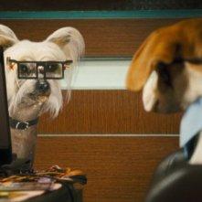 Una scena del film Cats & Dogs: The Revenge of Kitty Galore