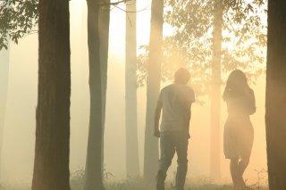 Una splendida sequenza del film Norwegian Wood
