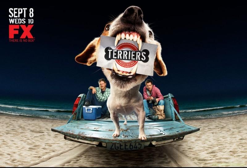 Poster Con Sviluppo Orizzontale Della Serie Terriers 171535