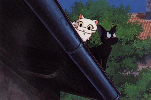 Il Gattino Jiji In Una Sequenza Del Film D Animazione Kiki Consegne A Domicilio 172195