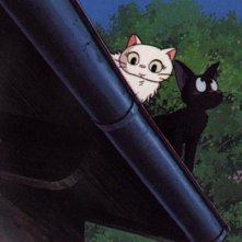 Il gattino Jiji in una sequenza del film d\'animazione Kiki consegne a domicilio