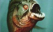Piranha 3D, sequel in arrivo