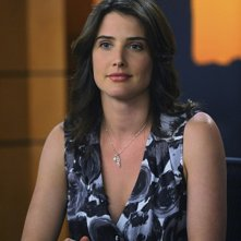 Cobie Smulders in una scena dell'episodio Zoo or False di How I Met Your Mother