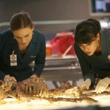 Emily Deschanel e Tamara Taylor nell'episodio The Boy with the Answer di Bones
