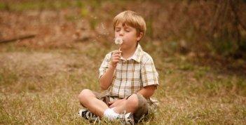 Il piccolo Maxwell Perry Cotton nel film Like Dandelion Dust