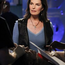 Sela Ward nell'episodio Damned If You Do di CSI New York