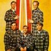 Tutti al cinema con i Beach Boys