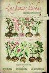 La locandina di Las buenas hierbas