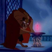 La Bestia in una scena del film d'animazione La bella e la bestia della Walt Disney Pictures