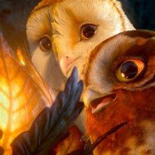 Soren e Gylfie ne Il regno di Ga'Hoole: la leggenda dei guardiani
