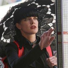 Abby (Pauley Perrette) in un momento dell'episodio Cracked di NCIS: Unità Anticrimine