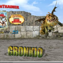 Un wallpaper dedicato all'uscita homevideo di Dragon Trainer, prevista il 2 Novembre 2010