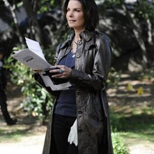 Sela Ward in CSI: New York, nell'episodio Scared Stiff
