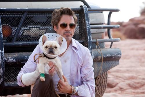 Robert Downey Jr Nel Road Movie Due Date 181841