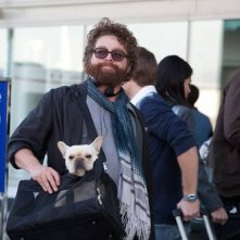 Zach Galifianakis nel road movie Due Date