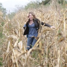 Sarah Roemer in una scena dell'episodio For The Good of Our Country di The Event