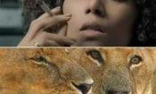 Frankie and Alice, African Cats e gli altri trailer della settimana