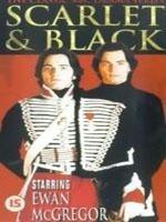 La locandina di The Scarlet and the Black
