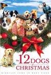 La locandina di I 12 cani di Natale