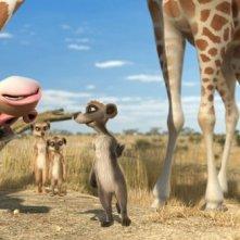 I simpatici protagonisti del film Animals United