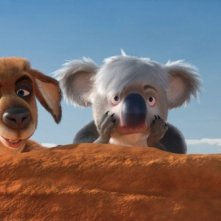 Una coppia di sorpresi animali nel film Animals United