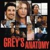Pioggia di new entry per Grey's Anatomy