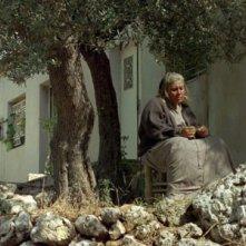 Una immagine del film La donna che canta