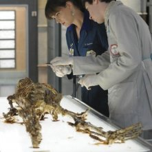 Emily Deschanel e Ryan Cartwright in una scena dell'episodio The Babe in the Bar di Bones
