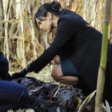 Emily Deschanel nell'episodio The Sin in the Sisterhood di Bones