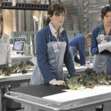Michaela Conlin, Emily Deschanel e Carla Gallo nell'episodio The Shallow in the Deep di Bones