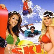 La locandina di Ski College