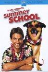 La locandina di Lezioni d'estate