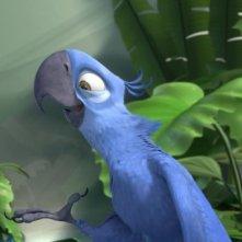 Due pennuti protagonisti del cartoon Rio in 3D